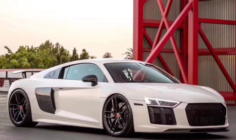 Audir82nd-eye