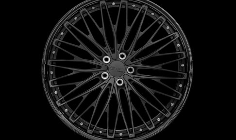CT233black-eye
